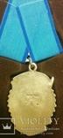Орден трудового красного знамени R перевыставление связи с потерей лота, фото №3