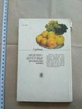 Молочно-фруктовые прохладительные напитки, фото №4