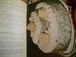 500 видов домашнего печенья 1961г, фото №7
