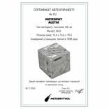 Куб із залізного метеорита Aletai, 60,6 грам, із сертифікатом автентичності, фото №3