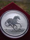 Австралия 1 доллар 2020 г. Лошадь Брамби Брумби (серебро 999 пробы, 1 унция) Конь, фото №2