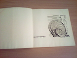 Миргород, фотоальбом, изд. Мистецтво  1968, фото №4