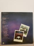 """Vinyl. Rock, Pop, Folk. """"Ian Matthew* – Stealin' Home"""", фото №3"""