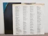 "Vinyl.  Rock, Pop. ""Terence Boylan – Terence Boylan"", фото №5"