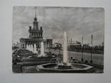 Всесоюзная сельскохозяйственная выставка. ИЗОГИЗ 1954 г., фото №11