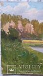 Л.Харламов р.Белая 1972  34,8х49,8 см, фото №3