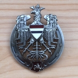 Знак 10 полка уланов Литовских Польша обр. 1926 Копия, фото №2