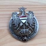 Знак 10 полка уланов Литовских Польша обр. 1926 Копия, фото №3