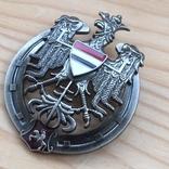 Знак 10 полка уланов Литовских Польша обр. 1926 Копия, фото №6