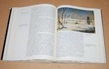 """Мальцева """"Саврасов"""" книга-альбом + каталог картин художника, фото №5"""
