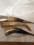 Рог сувенирный, фото №2