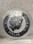 1 доллар 2007 Австралия,год Свиньи, фото №3