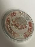 1 доллар 2007 Австралия,год Свиньи, фото №8