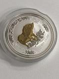 1 доллар 2007 Австралия,год Свиньи, фото №13
