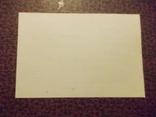 Документы+ конверт., фото №3