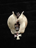Знак сводного казачьего отряда ЦР, копия, фото №3