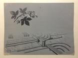 1964  Пейзаж. Орошение. Барчук И.И. 21,5х29, фото №2