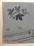 1964  Пейзаж. Орошение. Барчук И.И. 21,5х29, фото №6