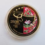 250 патак 2009 г. Китай (7,78 г. 999,9) PROOF, фото №4