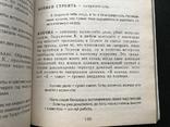 2007 Одесса Смирнов Большой полуТОЛКОВЫЙ словарь Одесского языка, фото №8