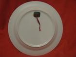 Декоративное настенное блюдо - Восточный мотив - фарфор - диаметр -27,5 см., фото №9