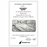 """Кулон """"Зодіак Кінь"""" з  метеорита Aletai, 40,9 грам, із сертифікатом автентичності, фото №3"""