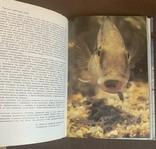 Девід Етенборо - Жива Планета 1988р., фото №4