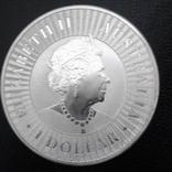 1 доллар 2019 года Австралия Кенгуру, 1oz 9999, фото №3