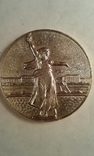 Настольная-медаль-монумент-мать-родина., фото №2