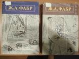 """Ж.А.Фабр""""Нравы насекомых"""",2 тома, фото №2"""