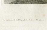 Старинная гравюра. 1834. Англия. Итон Холл, Чешир. 27х17см, фото №7