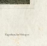 Старинная гравюра. 1834. Англия. Итон Холл, Чешир. 27х17см, фото №8