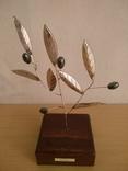 Оливковое дерево, фото №3