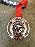 Медали спортивные наградные, лот, фото №5