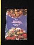 """Губа """"Овощи и фрукты на вашем столе"""" 1990р., фото №2"""