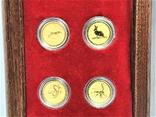 Австралия полный набор лунаров 1-я серия 1/20 унции золото, фото №6