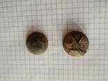 Старинные пуговицы (Российская империя), 2 шт (лот 1), фото №2