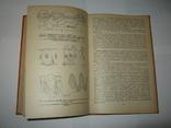 """Ю. А. Захваткин, """"Курс общей энтомологии"""", 1986 г., фото №12"""