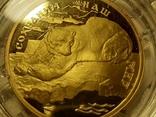 """100 рублей 1997 года, буквы ЛМД, proof """"полярный медведь"""", фото №10"""
