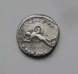 Денарий Домициан вес 2.67 гр, фото №11