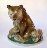 Медведица и медвежата, фото №10