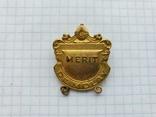 Masonic DE MOLAY Merit, фото №2