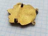 Masonic DE MOLAY Merit, фото №8