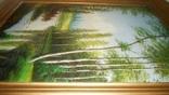 Лес и природа, фото №6
