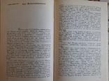 Іван Франко - літературний критик, І. І. Дорошенко, фото №8