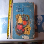 "Галушка ""Сад город пасіка"" 1973р., фото №2"