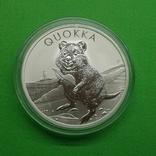 Австралия Квокка Quokka Фауна 2020 Серебро, фото №2