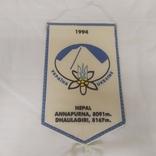 Вымпел 1994 Альпинизм. Туризм. Украина, фото №2