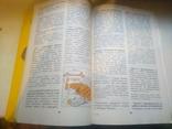 Рецепты с использованием хлеба. Хлеб в нашем доме., фото №6