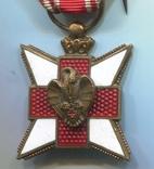 Бельгия. Бельгия. Орден Красного Креста, фото №3